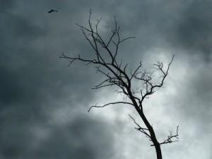 Как выйти из депрессии, причины и признаки депрессии